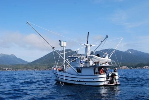 "50' Commercial Salmon Troller - F/V Pelican… this boat is not for sport fishing… it is for ""Deadliest Catching"" (formerly called Dude Fishing). Non-stop action and no limits on salmon! Fishes 4-6 guests. Yacht quality interior."