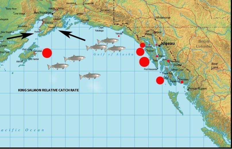 gulf-of-alaska-map-king-salmon-catch-rate